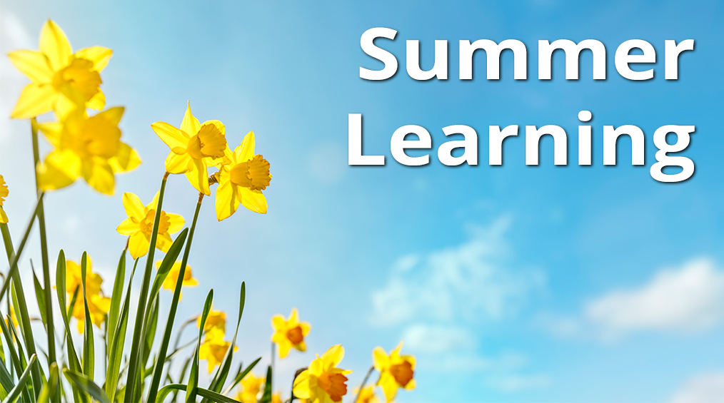 Đọc Học hè